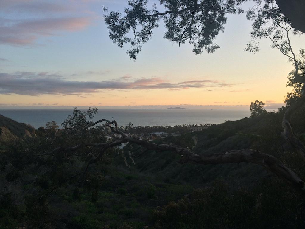 Anacapa from atop the Ventura Botanic Garden